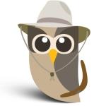 An owl dressed as an Australian