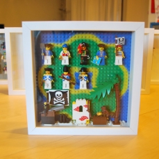 Framed pirates